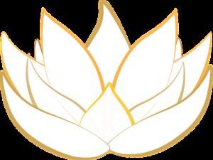 lotus-tao-vibration